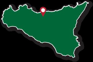 albicocche-scillato